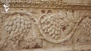 DiKKAT! Rum Ermeni Üzüm Define İşareti Çözümü!