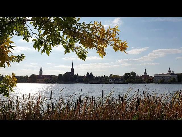 Ráckevei ősz
