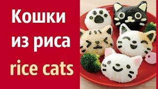 Рисовые Кошки.  Rice cats. #Japan ИДЕИ ДЛЯ ОФОРМЛЕНИЯ БЛЮД  для детей. Оригинальное блюдо из риса