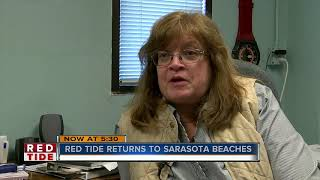 Red tide present on Sarasota County beaches
