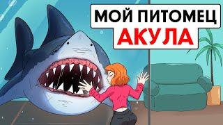 Мой питомец - акула !