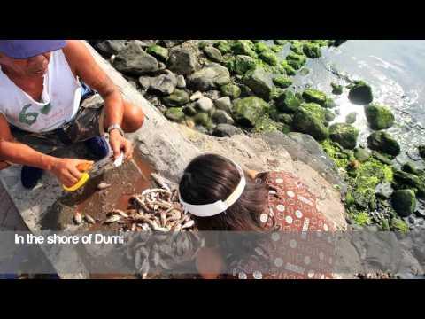The bounty of Tanon Strait