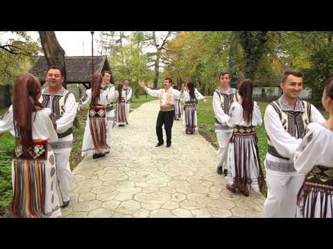 Doru Taranu - Hai la bagea cu mustata (FULL HD)