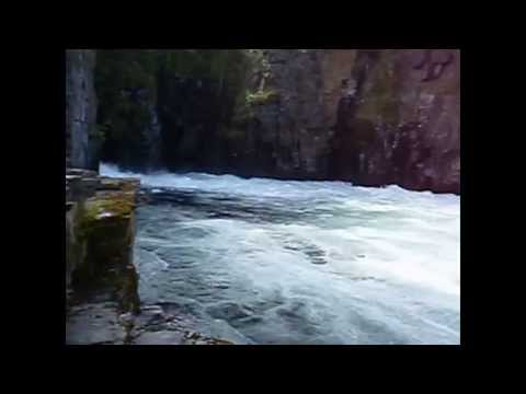 Trip from Abisko through Lofoten, Nordland to Fauske