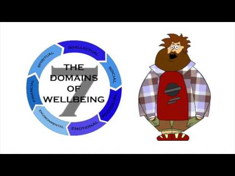 Seven Domains of Wellbeing