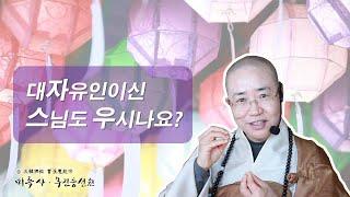 [정각설법 正覺說法]대자유인이신 스님도 우시나요?