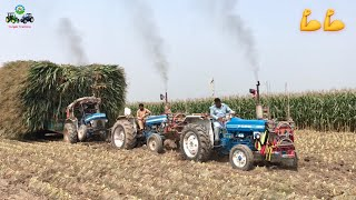 Tractor Stunt | Ford 3610 Ford 4610 Massey 375 Tractor Pulling out Maize loaded Trolley