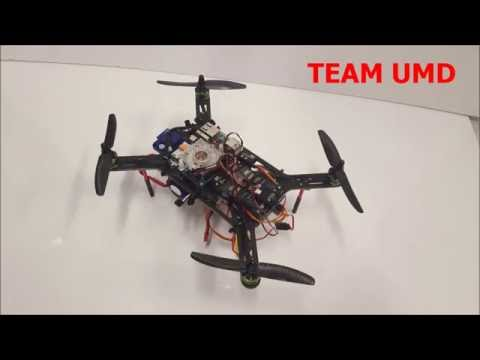 UMD Micro Air Vehicle