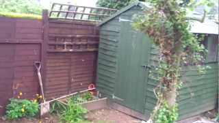 Quick Overview Of The Rabbit Shed, Run And Inside