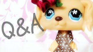 LPS- Q&A