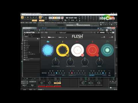 Native Instruments Flesh - Presets Demo - Awesome weird sounding VST