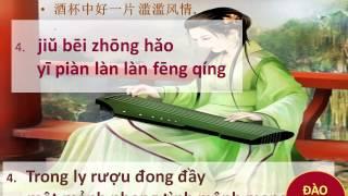 DẠY HỌC TIẾNG TRUNG CẤP TỐC - CÔ ĐÀO HẠNH : bài giảng mẫu ....Hong dau nam quoc sinh