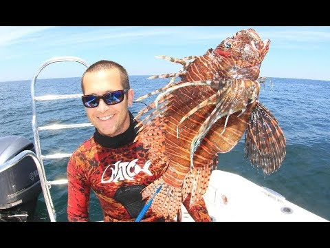2018April28 LionFish Hunting Off Pensacola On The Southern Spear-It