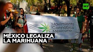 México legaliza la marihuana y abre la puerta a un negocio multimillonario