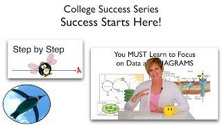 Success Starts Here!