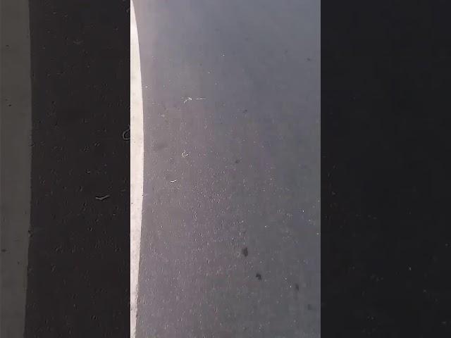 Skateboarding in kochi