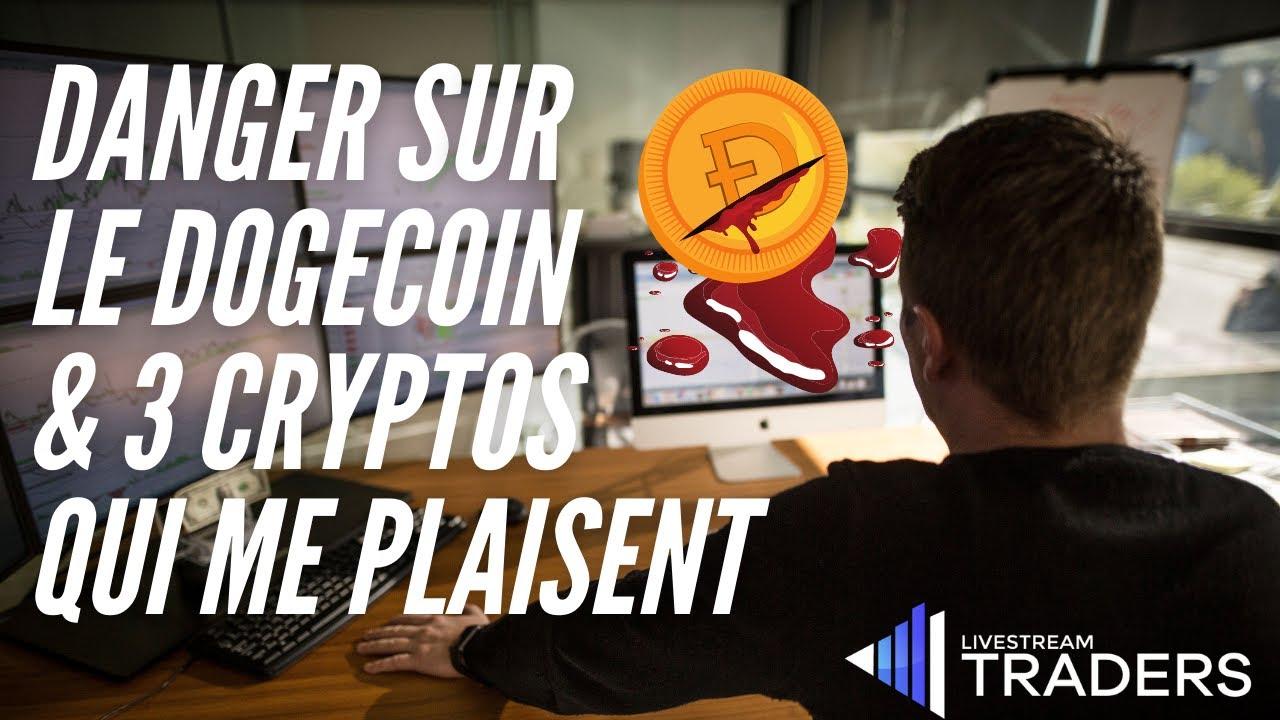 Cryptos : Danger sur le Dogecoin & Oly, Shiba, Selfkey, Streamr ...