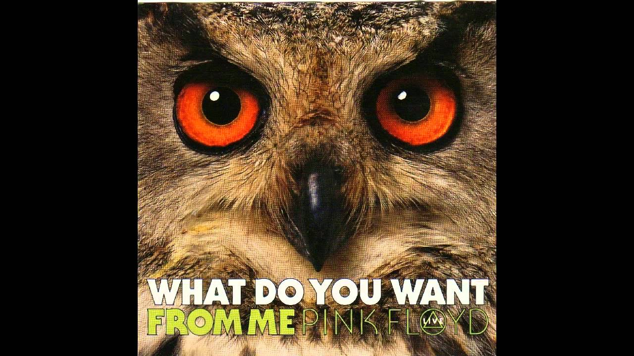 what do you want from me pink floyd