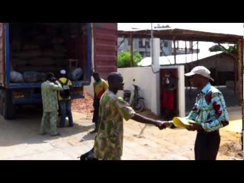Cajou Bénin Export