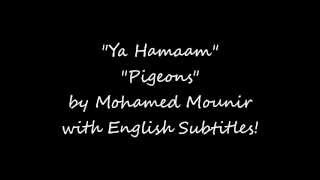 Ya Hamam - Pigeons by Mohamed Mounir with English Subtitles