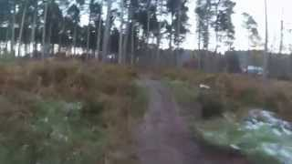 Campsite To Birches Valley - Follow The Dog