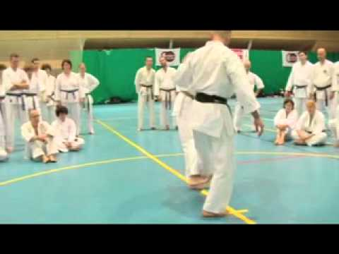 Karate, International Makotokai seminar Bohinj 2011 - part. 1