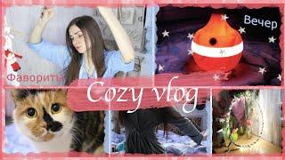 Домашнии влог Мое оборудование для видео уход за кожеи фавориты зимы