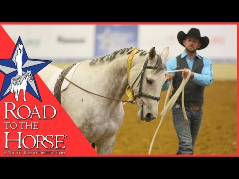Road to the Horse 2017 - Extra Footage - Dan James Clinic