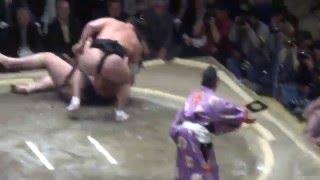 20160114大相撲初場所5日目 日馬富士 vs 魁聖.