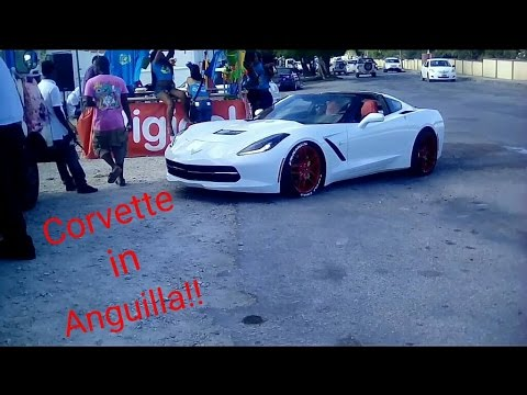 The beast of Anguilla!!