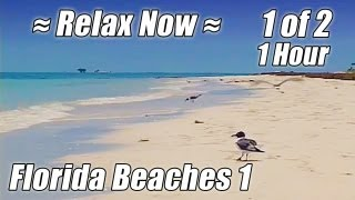 1 HOUR OF RELAXING OCEAN WAVES #1 Soothing Wave Sounds Relax Beach Hypnosis Meditation study video