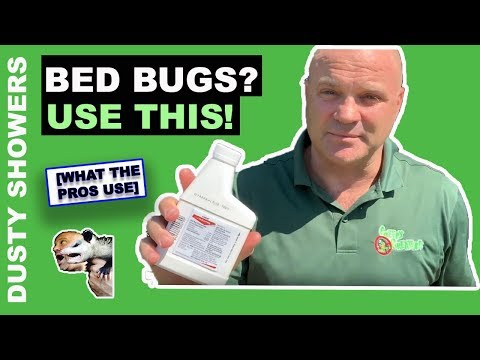 How To Get Rid Of Bed Bugs [Use ONLY This]