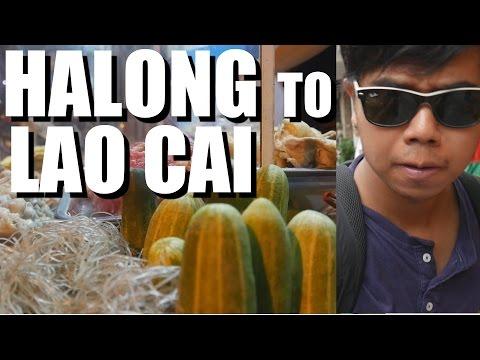 LONG VIETNAM TRAVEL DAYS: Ha Long to Sa Pa.