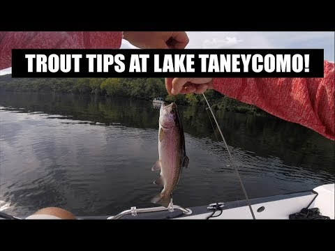 Trout Fishing Tips At Branson On Lake Taneycomo!