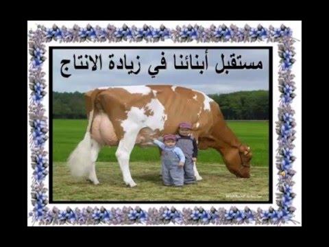 تنمية  الثروة الحيوانية