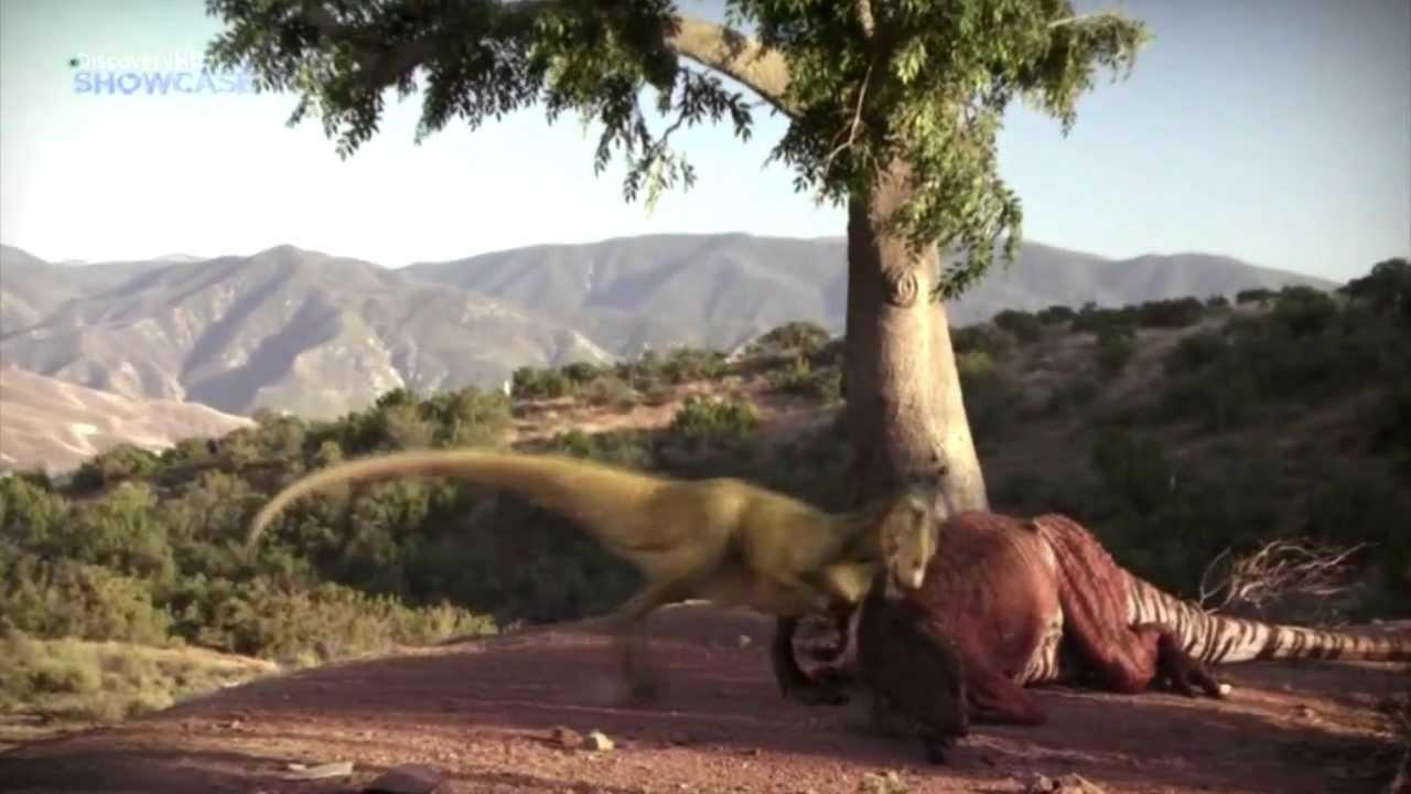 Best Epic Battles - Allosaurus Vs Torvosaurus - YouTube