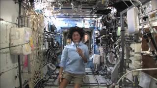 Station Crew Member Suni Williams Discusses Life in Space with Media Representatives