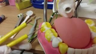 치과ASMR1