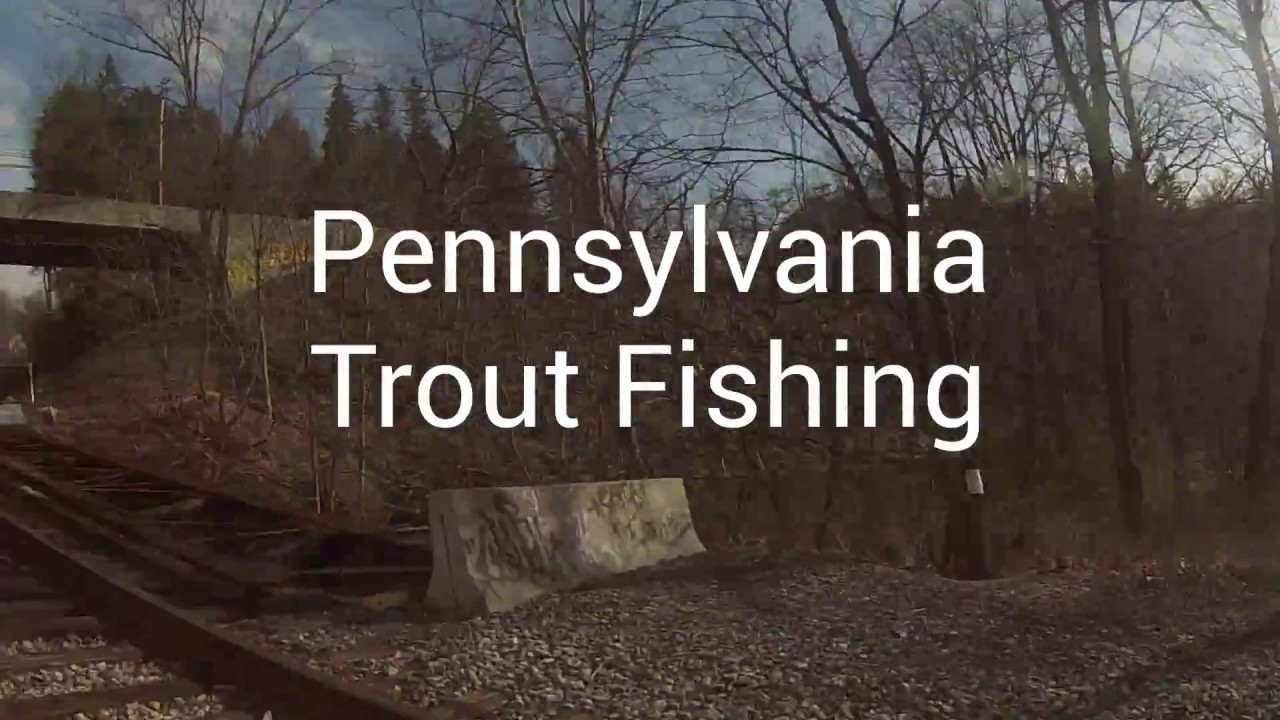 Pa trout fishing youtube for Pa out of state fishing license