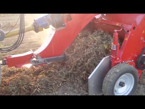 Dry Bean Harvesting - Threshing - Double Master IV | Sweere