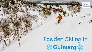 Gulmarg Treeline powder skiing
