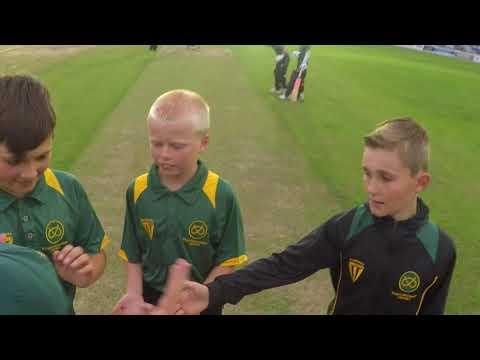 Floodlit Cricket at Meakins 2017