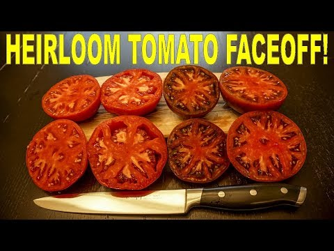 heirloom-tomatoes:-brandywine-pink-vs-brandywine-red-vs-brandywine-black-vs-cherokee-purple!