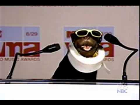 triumph, the insult comic dog vs. eminem at mtv music awards - youtube