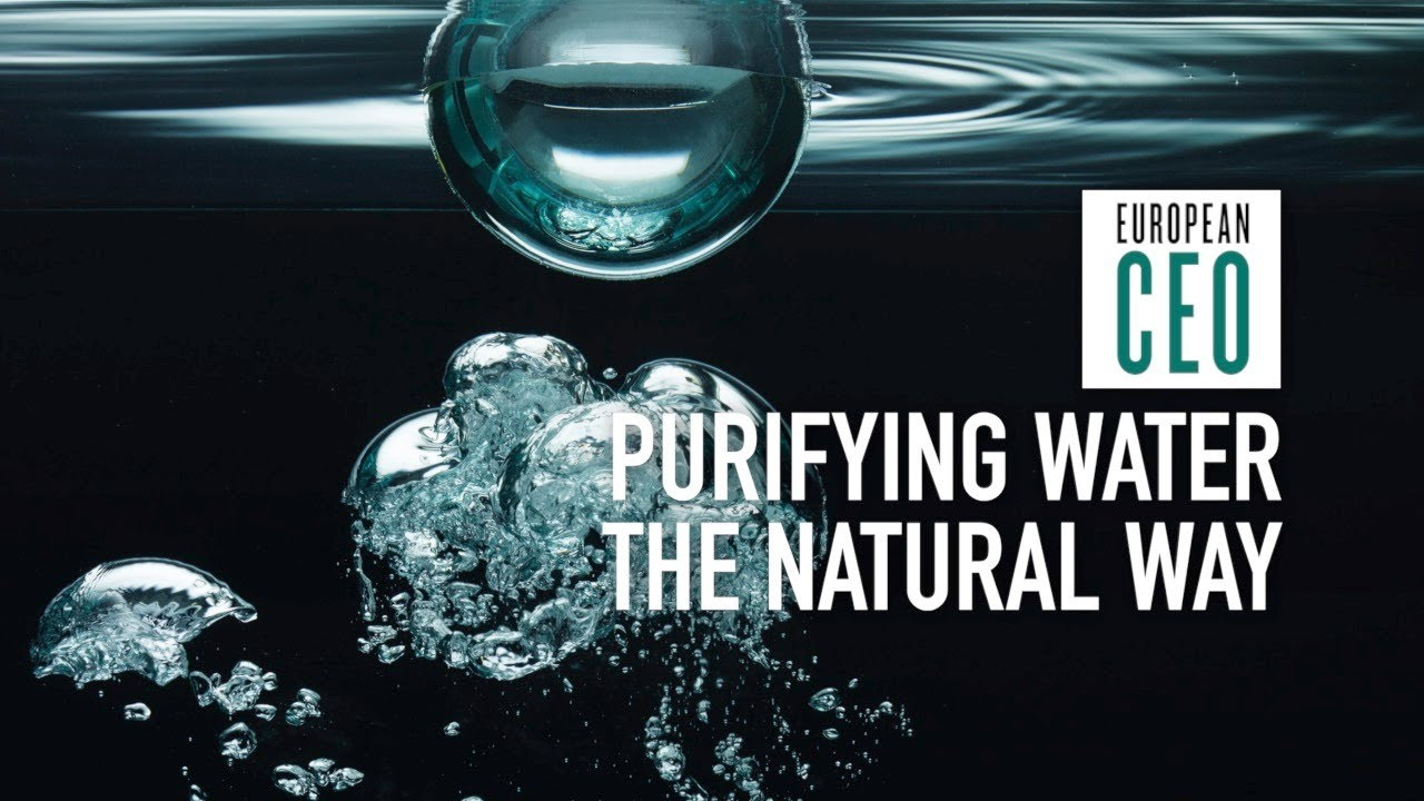 Aquaporin water purification based on 'billions of years of