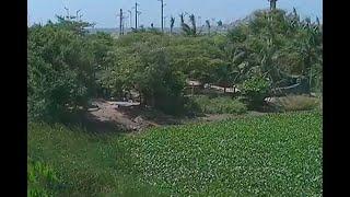 Conmoción en Barranquilla por hallazgo de cuerpo desmembrado | Noticias Caracol