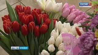 Какие цветы можно купить в Брянске к празднику(, 2017-03-07T10:28:07.000Z)