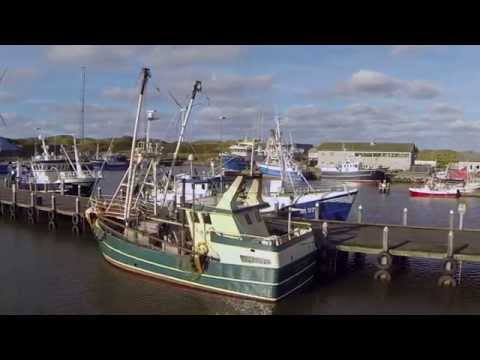 Port of Hvide Sande   Commercial Fishing
