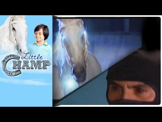 Little Champ - Episode 19