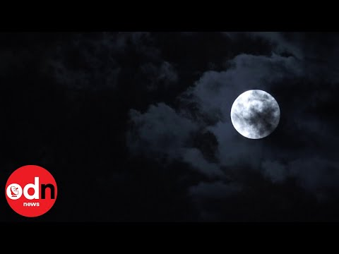 Once in a Blue Moon! Phenomenon in Berlin and Miami
